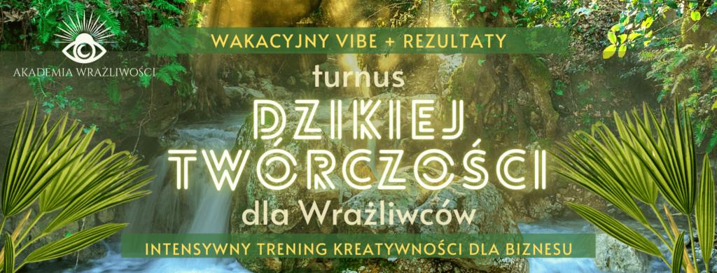 turnus dzikiej twórczości wAkademii Wrażliwości